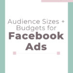 Audience Sizes and Budgets for Facebook Ads